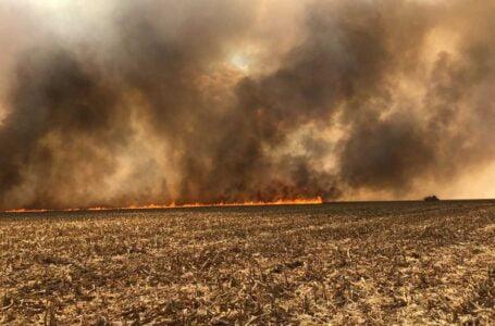 Sindicato Rural de Rondonópolis vai promover capacitação gratuita para formação de brigadas de incêndio