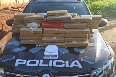 Força Tática encontra 72 tabletes de maconha dentro de geladeira em Rondonópolis